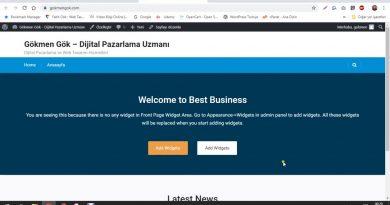 WordPress Site Örneği – İçerik Girişi ve Tema Düzenleme